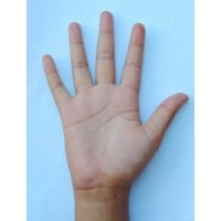 Palm Reading Chart – Learn More About Our Fingers' Features