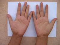 Hand Used In Palm Reading